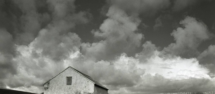 Amelia Stein - 'White Stable' 2012. Courtesy of Oliver Sears Gallery