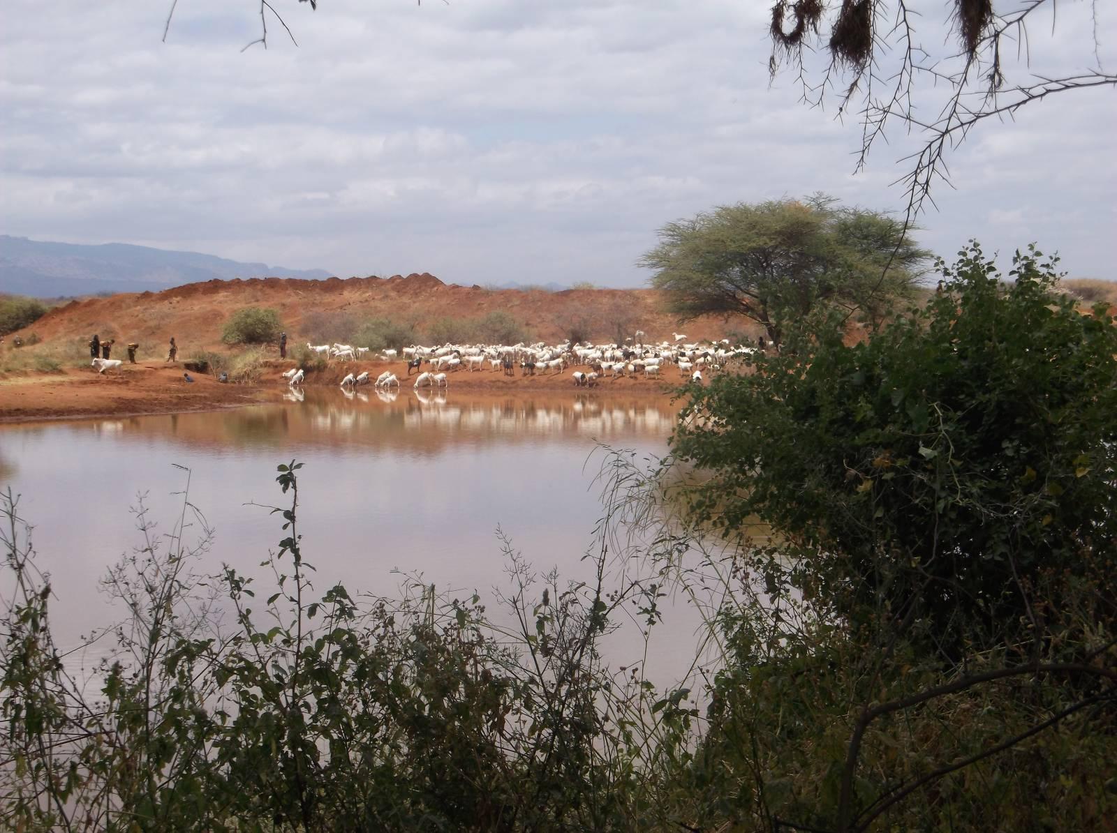 © Ilmee Sora Haro 2015 | PhotoVoice | Christian Aid | 'BRACED' | Ethiopia
