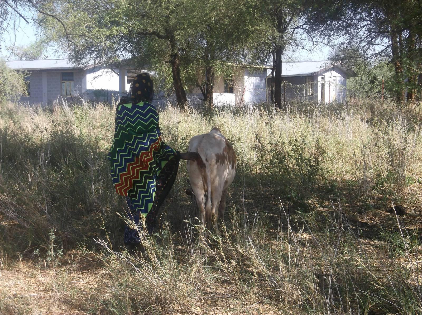 © Ganyu Duba Barangudo 2016 | PhotoVoice | Christian Aid | 'BRACED' | Ethiopia