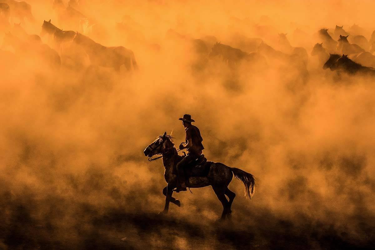 © Oktay Subasi, Turkey, Shortlist, Open, Motion, 2017 Sony World Photography Awards