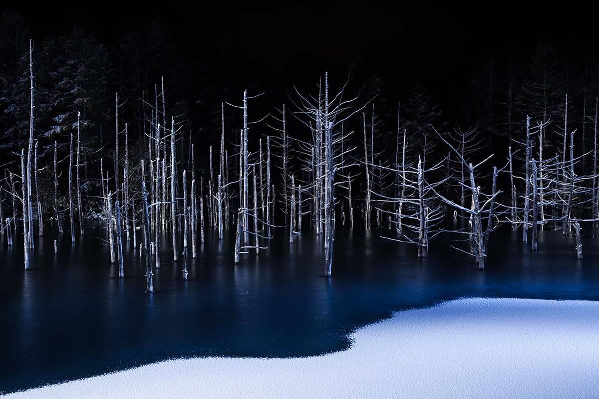 'Border Line' by Hiroshi Tanita, Japan, Winner, Open, Nature, 2017 Sony World Photography Awards