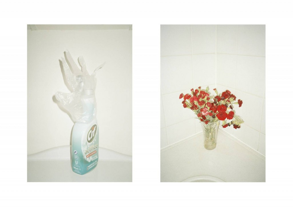 © Jessica Hardy, Cif Flower